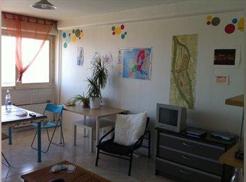 chambre dans appartement spacieux à 100m du tram