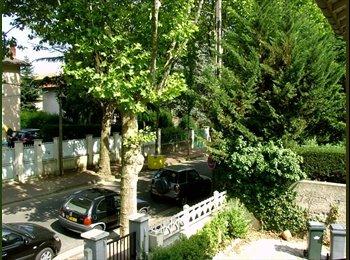 Appartager FR - Au CALME et dans une VILLA en VILLE proche tramway, commerce, etc- U de LYON 2 et Grange Blanche, Lyon - 355 € /Mois