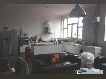 Appartager FR - Chambre dans loft 200m2 - Saint-Etienne, Saint-Etienne - 310 € /Mois