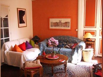 Appartager FR - plutot facile a vivre, independante, chambre individuelle - Le Vésinet, Paris - Ile De France - 500 € /Mois