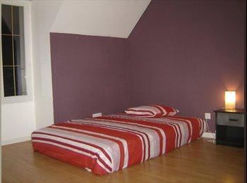 410€ chambre APL accepté