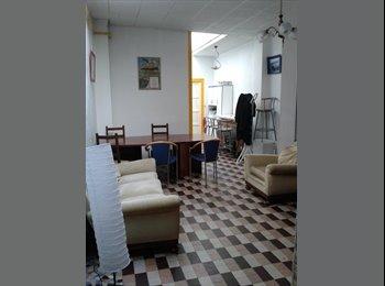 Appartager FR - OFFRE APPARTEMENT DE 75 M2 EN CO-LOCATION - LYON 6, Villeurbanne - 350 € /Mois