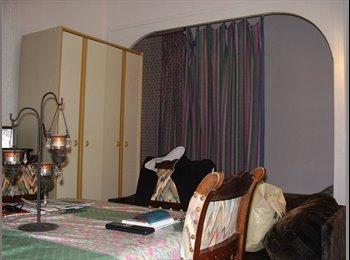 Bel appart ancien meublé, clair, rénové, très bien situé,...