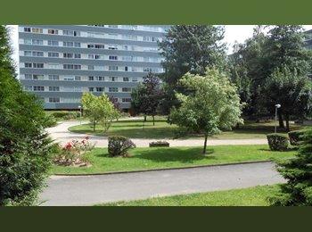 Appartager FR -  APPART DEUX CHAMBRES dispo: 1/10/2015 - Vandœuvre-lès-Nancy, Nancy - 380 € /Mois