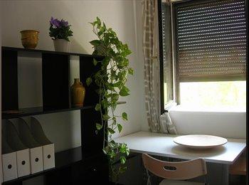 Chambre à louer dans quartier Antigone Montpellier