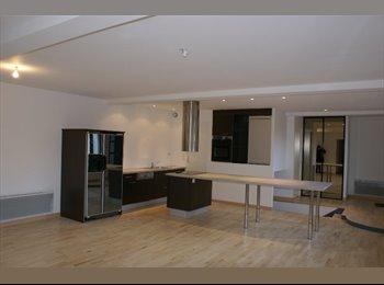 Appartager FR - Loft comtemporain - Vannes, Vannes - 380 € /Mois