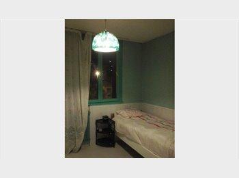 Appartager FR - belle  chambre, Annemasse - 480 € /Mois