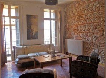 colocation dans grand appartement Perpignan centre ville