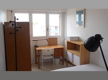 Appartager FR - ROOM AVAILABLE CHAMBRE A LOUER - Montpellier-centre, Montpellier - 300 € /Mois