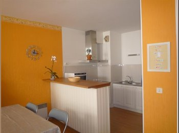 Appartager FR - CHAMBRE MEUBLEE - Bel appartement rénové neuf, Bayonne - 430 € /Mois