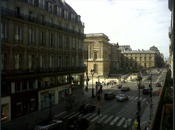 Grand appart et colocataires sympas Louvre Rivoli