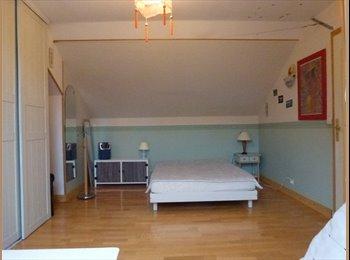 Chambre à louer dans maison à Lons