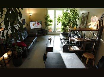 Chambre dans grand appartement de 124 m²