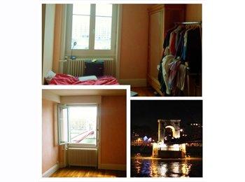 Colocation dans un appartement spacieux quai saone
