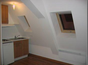 Appartager FR -  STUDIO  Meublé et équipé Centre  Colmar - Colmar, Colmar - 365 € /Mois