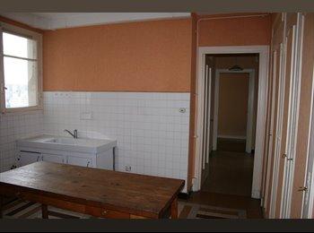 Appartager FR - Loue chambre ds un apt T4, 355€ chg TOUT compris - 8ème Arrondissement, Lyon - 355 € /Mois