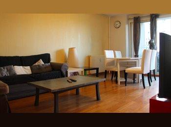 Appartement de 92m2 a louer par des étudiants