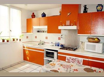 Appartager FR - Chambre meublée à louer chez l'habitant - Pau, Pau - 350 € /Mois