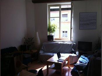 Appartager FR - La Coloc' X Paquet - 1er Arrondissement, Lyon - 400 € /Mois