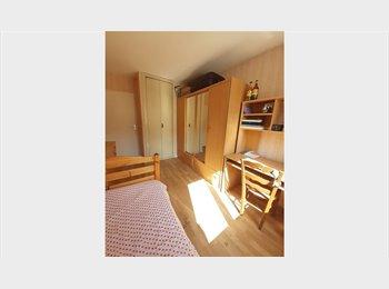 Duvidir a casa, Flatmate wanted