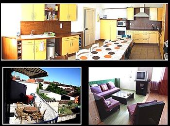 Appartager FR - Coloc etudiante dans duplex de 220m² a 50m de la FAC - Albi, Albi - 300 € /Mois