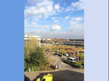 Appartager FR - Grand appartement de 125m2 pour colocation - Colmar, Colmar - 370 € /Mois