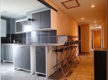 Appartager FR - Chambre meublée - Fer à Cheval - Patte d'Oie - Arènes, Toulouse - 335 € /Mois