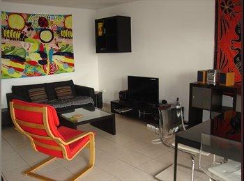 Appartager FR - Coloc spacieuse meublée de 4 pers   (1 place de libre, courte durée) - Angers, Angers - 363 € /Mois