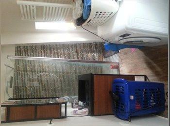 Appartement, plein centre, 94 m2, 550€/mois