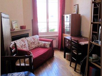 Appartager FR - Idéalement situé! idéal stagiaires et étudiants , Lyon - 420 € /Mois