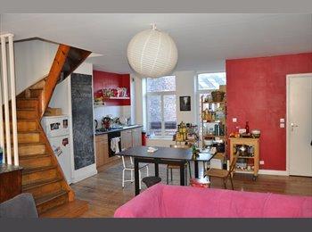 Appartager FR - Colocation à 3 duplex lille Republique disponible le 1er Fevrier - Lille-Centre, Lille - 367 € /Mois