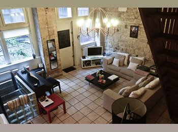 Room with private bathroom in a 115m2 triplex - Marais