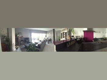 Appartager FR - Loue chambre - Centre ville à 5 min. - Albi, Albi - 500 € /Mois