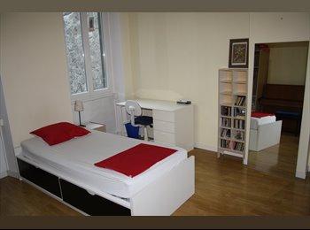 une  chambre simple centre toute commodité