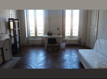 Appartement en colocation internationale
