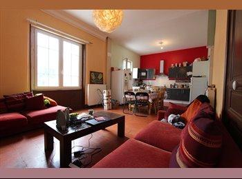 Appartager FR - Colocation pour 25/30 ans dans maison spacieuse - Albi, Albi - 280 € /Mois
