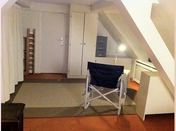 Appartager FR - LOCATION GDE CHBRE + BUREAU 94 ST MAUR DES FOSSES - Saint-Maur-des-Fossés, Paris - Ile De France - 650 € /Mois