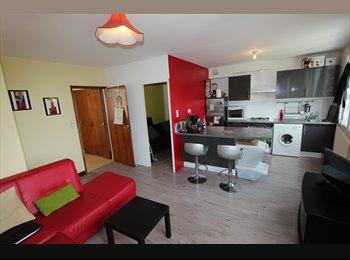 Appartager FR - Colocation sympa ds maison rénovée en centre ville - Albi, Albi - 300 € /Mois