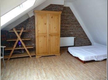 Appartager FR - chambre sympa pour personne sympa - Lille-Sud, Lille - 360 € /Mois