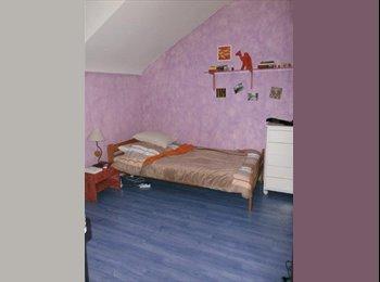 Appartager FR - colocation maison - Belfort, Belfort - 300 € /Mois