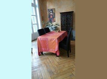 Appartager FR - chambre dans appartement ancien 127 m2, Saint-Etienne - 370 € /Mois