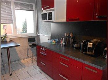 Appartement T4 pour colocation (5min de Rouen)