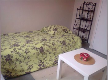 Appartager FR - chambre meublée claire angers madeleine, Angers - 310 € /Mois