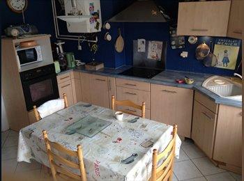 Appartager FR - A louer 3 chambres dans grand appartement - Metz, Metz - 420 € /Mois