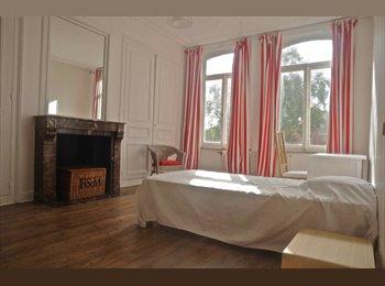 Appartager FR - grande chambre location courte - Lille-Centre, Lille - 430 € /Mois