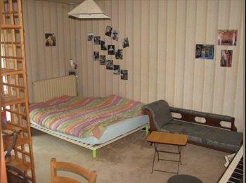 Chambres à louer dans grande maison