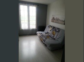 Colocation 1 chambre