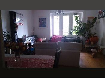 Appartager FR - Colocation à 4 au centre ville - Strasbourg, Strasbourg - 376 € /Mois