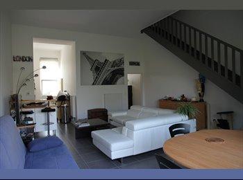 Appartager FR - Coloc dans maison avec jardin - Lille-Sud, Lille - 400 € /Mois