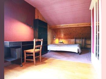 Appartager FR - Chambre 18 m2 à louer dans appartement indépendant - Gaillard, Annemasse - 500 € /Mois